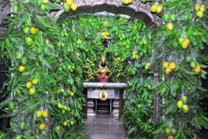 Mangos decoration