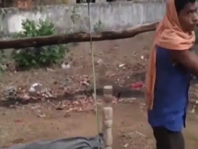 daughter dead body in madhyapradesh