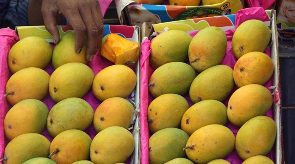 mangoes pune 1200