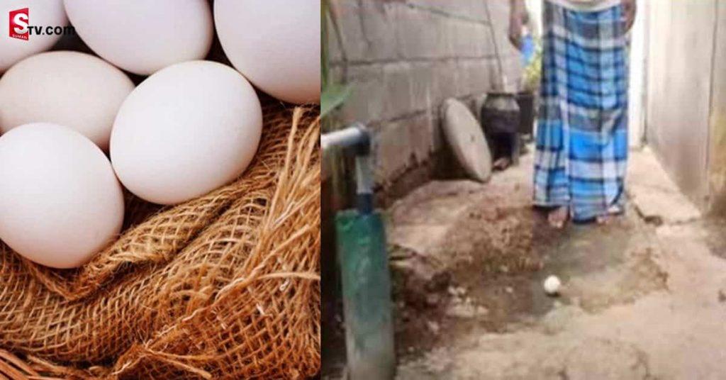 Eggs min
